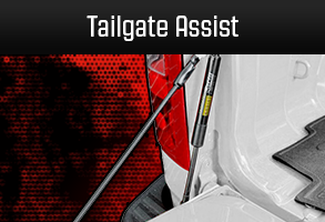 Truck Tailgate Lower Assist